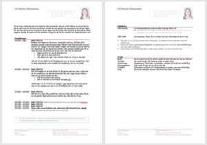 En skärmdump på sid 1 och 2 av ett exempel-CV